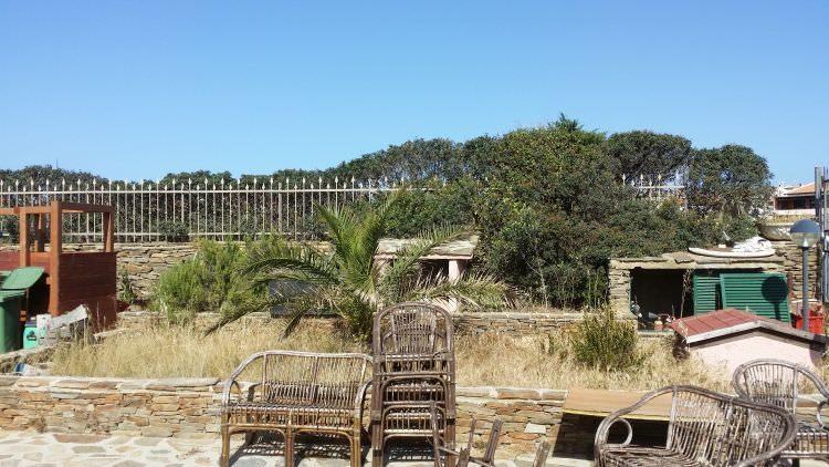 giardino con erbacce