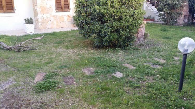 giardino privato a Sassari, curato ma secco nel quale verrà posato il prato in erba sintetica