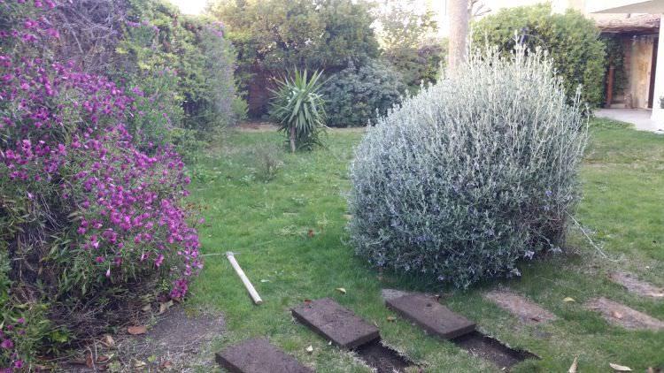 giardino privato a Sassari dove sarà posato il prato sintetico